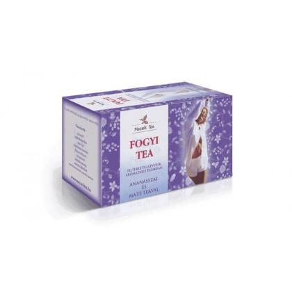 Mecsek Ovocno bylinný čaj na chudnutie 20x1g